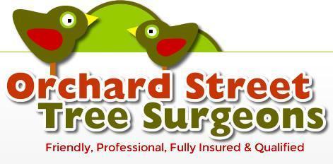 orchard-street-tree-surgeons